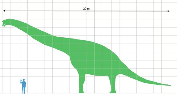 giraffatitan_scale