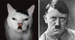 Adolf and his cat.