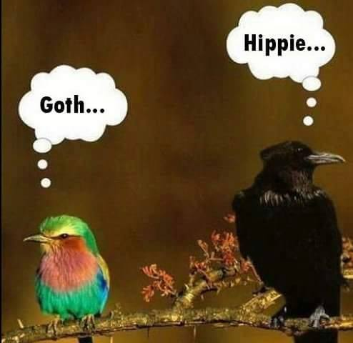 hippies-and-goth